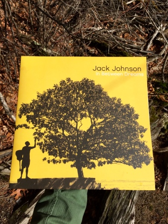 Jack Johnson : In Between Dreams